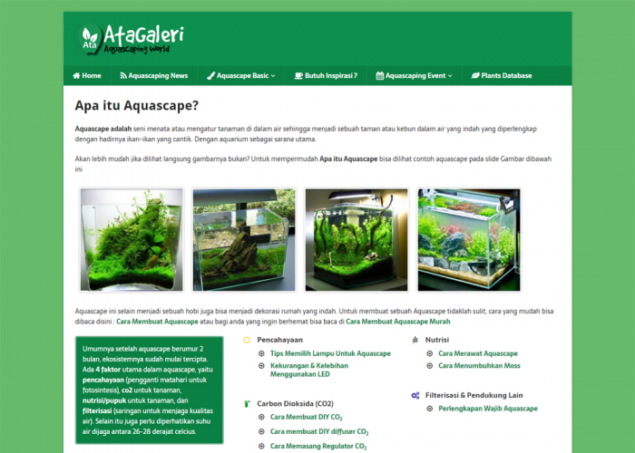 Indonesian Aquascaping Journal
