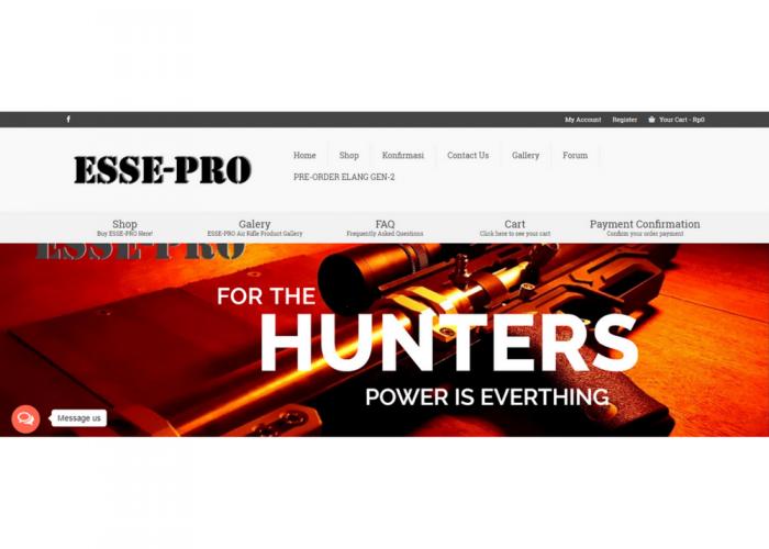 esse-pro.com