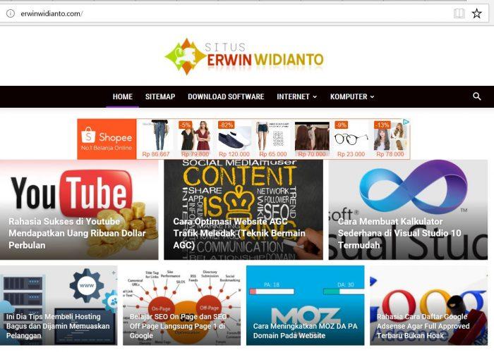 Situs Erwin Widianto